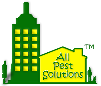 All Pest Solutions Logo