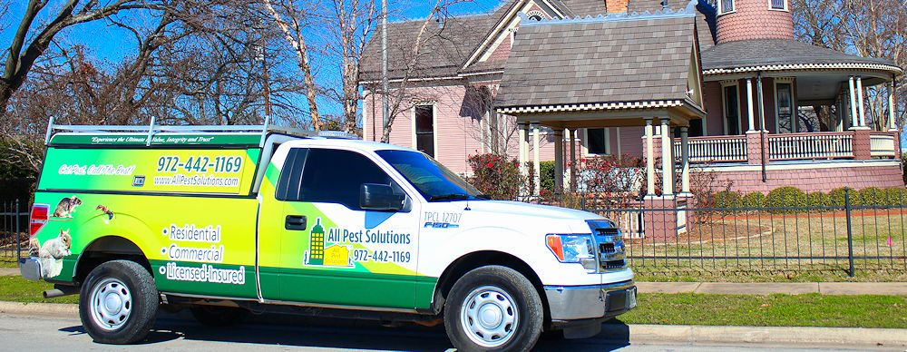 Pest Control Plano Tx - All Pest Solutions Hero
